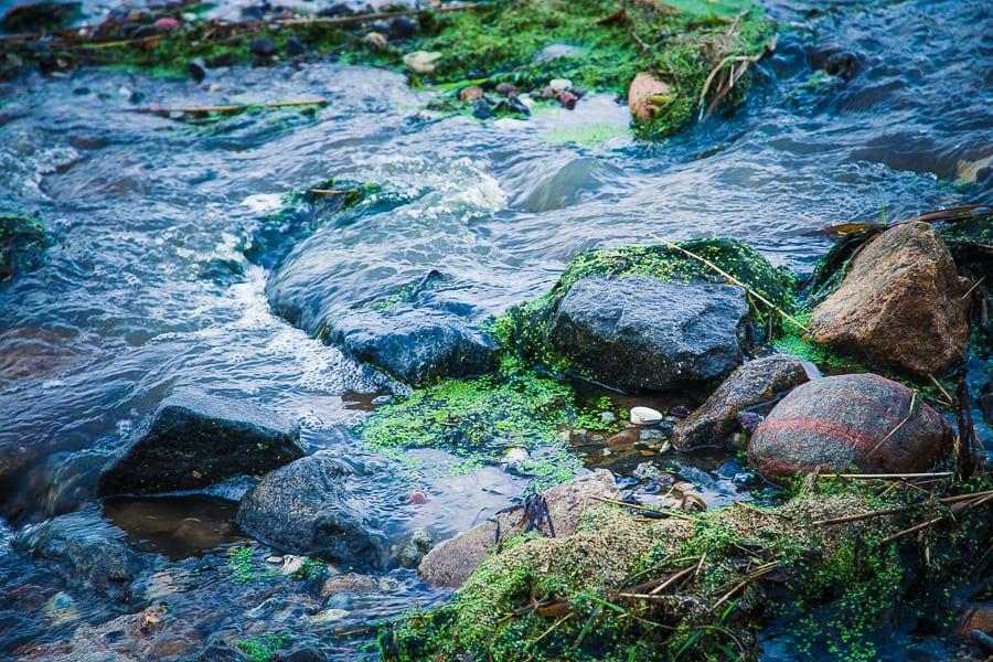 Limfjord_Tag_3_Vinderup (36 von 70)
