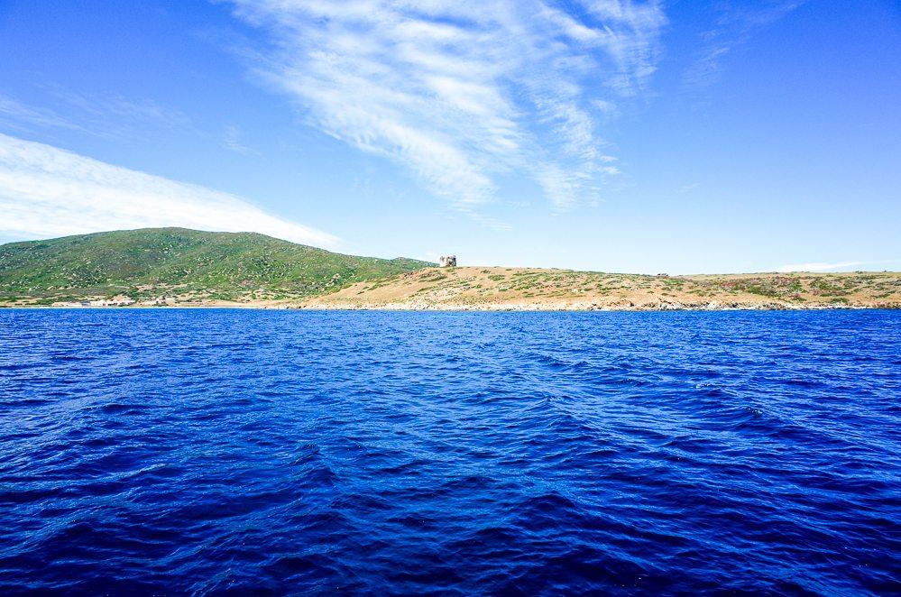 Bootstour im Nationalpark Asinara Asinarasailexperience