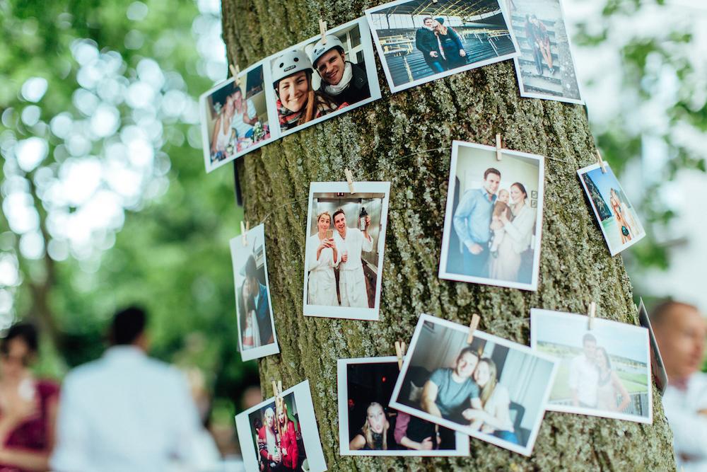Bilderbaum Hochzeit