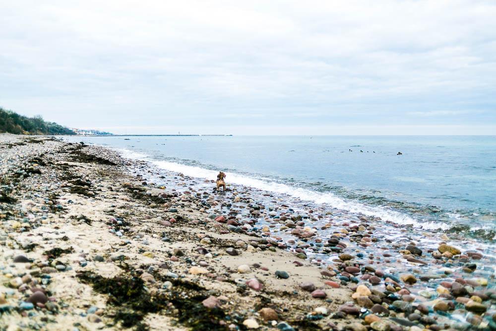 Strand Gut Klein Bollhagen