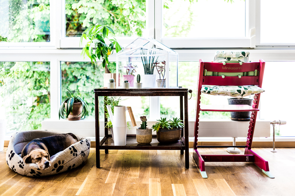 unsere spring story mit dem stokke tripp trapp ein blick in die glaskugel the kaisers. Black Bedroom Furniture Sets. Home Design Ideas
