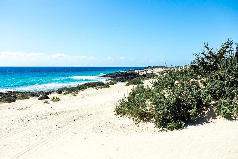 Fuerteventura Inselrundfahrt mit dem Mietwagen Corralejo Sanddünen
