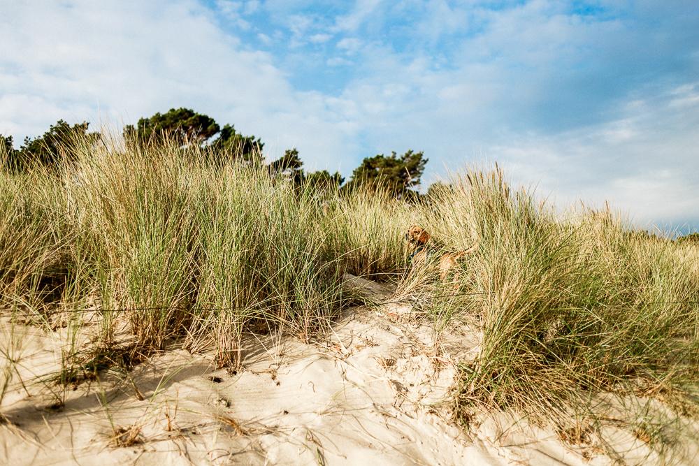 Mit Kleinkind auf Rügen Regenbogen Ferienanlage Göhren Ostsee Erfahrungen