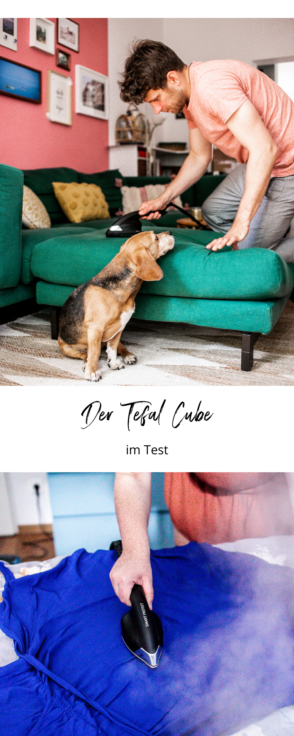 Tefal CUBE Test Review Hund Haustiere